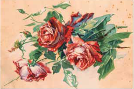 Rosas pintadas por Doña Lucilia